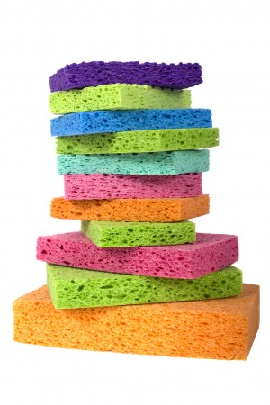 Multicolor Sponges