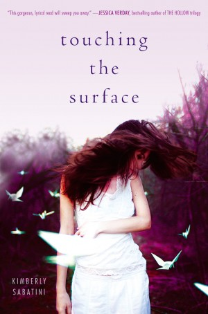 Touching the Surface cover =-blurb
